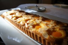 Golden apricot almond tart