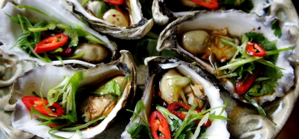 Steamed oysters with soy sauce, sesame oil, shallot, coriander and chilies