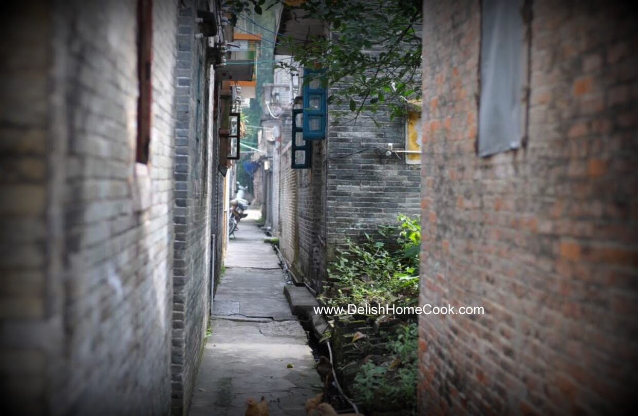 Taiishan village - the lane way leading to the house my uncle's family once lived
