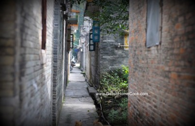Toisan village - the lane way leading to the house my uncle's family once lived