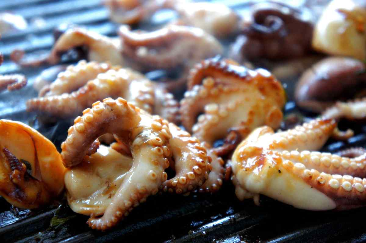 BBQ baby octopus in an Asian mariante with fish sauce, kaffir lime, kumquat juice, lemon juice, rice wine vinegar, sesame oil, FODMAP friendly, gluten free