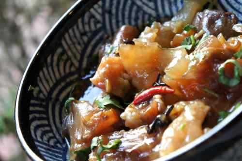 Beef tendon with Asian spices, FODMAP diet recipe, gluten free