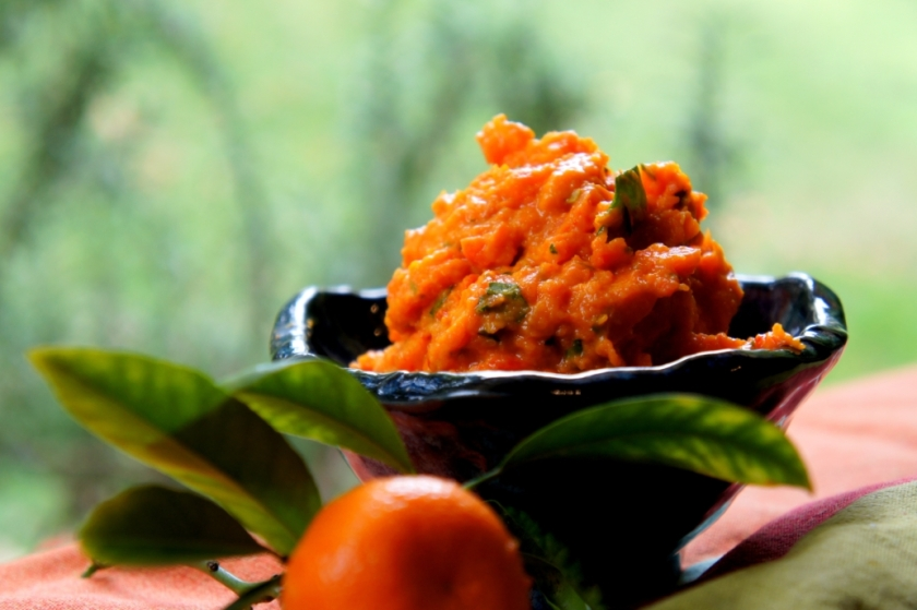 Asian inspired carrot, pumpkin and kumquat dip (low FODMAP, gluten free, vegan)